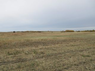 Photo 4: RR 270 North of Hwy 37: Rural Sturgeon County Rural Land/Vacant Lot for sale : MLS®# E4265129