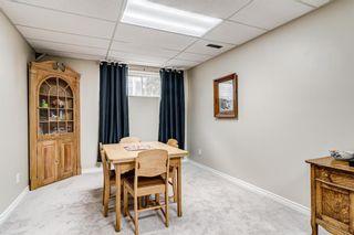 Photo 30: 84 Deerpath Road SE in Calgary: Deer Ridge Detached for sale : MLS®# A1149670