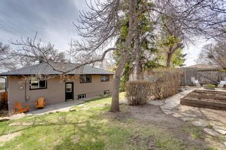 Photo 42: 219 Hendon Drive NW in Calgary: Highwood Detached for sale : MLS®# A1102936