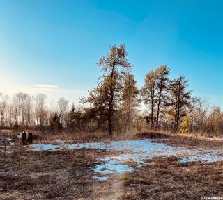 Photo 7: Over 1 acre lots in Hudson Bay: Lot/Land for sale : MLS®# SK850475
