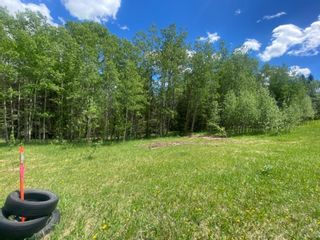 Photo 8: 5.78 Acres Parkins Road: Rural Foothills County Land for sale : MLS®# A1086953