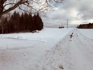 Photo 28: 1248 Conquerall Road in Conquerall Mills: 405-Lunenburg County Residential for sale (South Shore)  : MLS®# 202101420