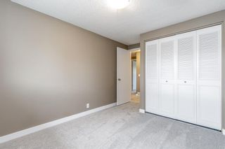 Photo 23: 132 Pineland Place NE in Calgary: Pineridge Detached for sale : MLS®# A1110576