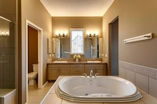 Photo 19: 219 Springbluff Heights SW in Calgary: Springbank Hill Detached for sale : MLS®# A1047010
