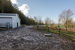 Photo 44: 41056 BELROSE Road in Abbotsford: Sumas Prairie House for sale : MLS®# R2039455