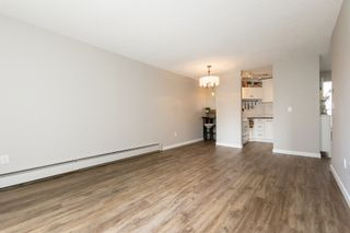 "Photo 9: 205 707 EIGHTH Street in New Westminster: Uptown NW Condo for sale in ""The Diplomat"" : MLS®# R2273026"