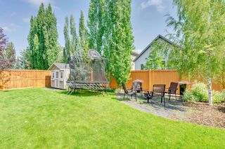 Photo 49: 22 ELGIN ESTATES Grove SE in Calgary: McKenzie Towne Detached for sale : MLS®# A1019563