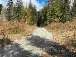 Photo 12: 1815 HARMAN Road: Roberts Creek Land for sale (Sunshine Coast)  : MLS®# R2614266