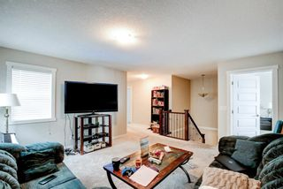 Photo 21: 33 Williamstown Park NW: Airdrie Detached for sale : MLS®# A1056206