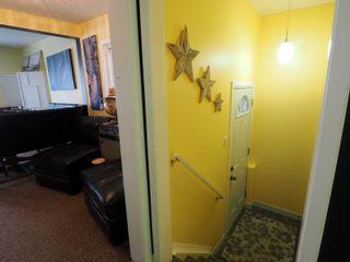 Photo 23: 425 Crescent Road E in Portage la Prairie: House for sale : MLS®# 202101949