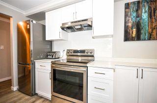 "Main Photo: 203 2036 COQUITLAM Avenue in Port Coquitlam: Glenwood PQ Condo for sale in ""BURKEVIEW MANOR"" : MLS®# R2593363"
