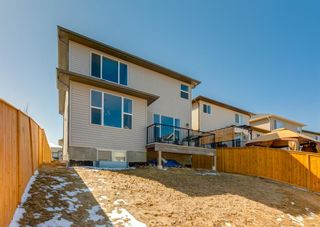 Photo 44: 102 Bayview Street SW: Airdrie Detached for sale : MLS®# A1088246
