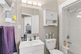 Photo 17: 6109 54 Avenue: Cold Lake House for sale : MLS®# E4228701