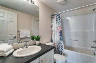 Photo 31: 2207 279 Copperpond Common SE in Calgary: Copperfield Apartment for sale : MLS®# A1119768