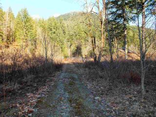 Photo 16: 21902 UNION BAR Road in Hope: Hope Kawkawa Lake Land for sale : MLS®# R2467753
