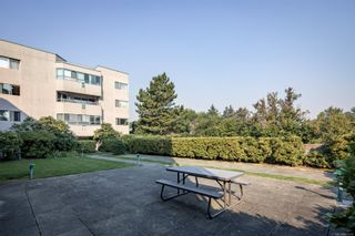 Photo 20: 310 1100 Union Rd in : SE Maplewood Condo for sale (Saanich East)  : MLS®# 855219