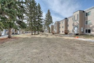 Photo 39: 306 315 Heritage Drive SE in Calgary: Acadia Apartment for sale : MLS®# A1090556