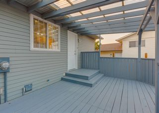 Photo 41: 205 RUNDLESON Place NE in Calgary: Rundle Detached for sale : MLS®# A1153804