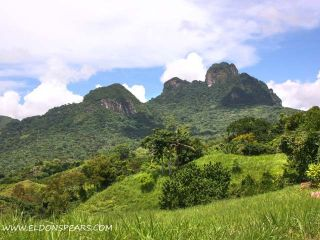 Photo 5: Trinity Hills Valley, Lidice, Panama - Mountain Community