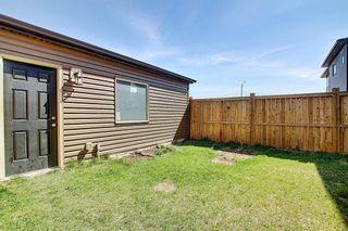 Photo 41: 144 Cornerstone Avenue NE in Calgary: Cornerstone Semi Detached for sale : MLS®# A1116950