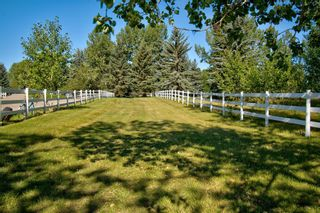 Photo 46: 17 Willowside Drive: Rural Foothills County Detached for sale : MLS®# A1141416