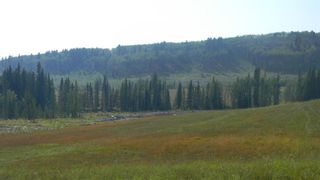 Photo 15: Corner of 178 Ave & 336 St W: Rural Foothills County Land for sale : MLS®# A1053038