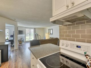Photo 12: 107 9 Country Village Bay NE in Calgary: Country Hills Apartment for sale : MLS®# A1106185