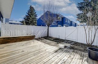 Photo 36: 56 251 90 Avenue SE in Calgary: Acadia Row/Townhouse for sale : MLS®# A1095414