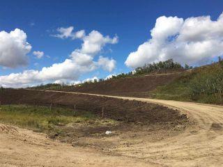 Photo 4: TWP ROAD 492 RANGE ROAD 234: Rural Leduc County Rural Land/Vacant Lot for sale : MLS®# E4263215