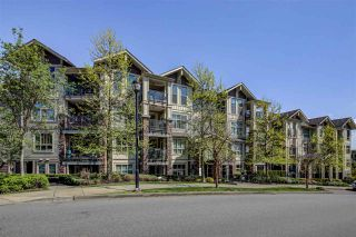"""Photo 28: 206 265 ROSS Drive in New Westminster: Fraserview NW Condo for sale in """"GROVE AT VICTORIA HILL"""" : MLS®# R2572581"""
