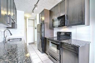 Photo 5: 102 4455A Greenview Drive NE in Calgary: Greenview Apartment for sale : MLS®# A1088042