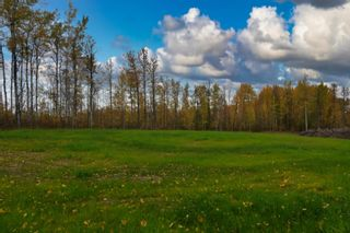 Photo 3: #9 North Pigeon Lake Estates: Rural Wetaskiwin County Rural Land/Vacant Lot for sale : MLS®# E4265016