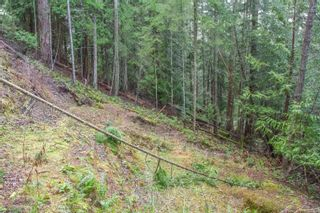 Photo 23: 2604 Yardarm Rd in : GI Pender Island Land for sale (Gulf Islands)  : MLS®# 863927