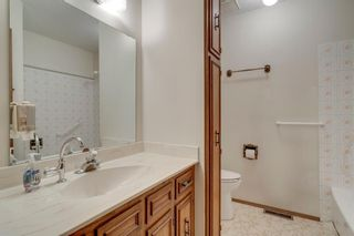 Photo 22: 7719 67 Avenue NW in Calgary: Silver Springs Detached for sale : MLS®# A1013847