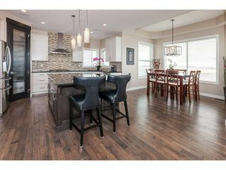 Photo 11: 264 RAINBOW FALLS Way: Chestermere House for sale : MLS®# C4117286
