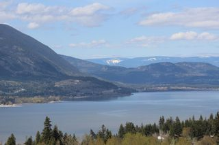 Photo 54: 2261 SE 4th Avenue in Salmon Arm: Salmon Arm SE House for sale (Shuswap)  : MLS®# 10097012