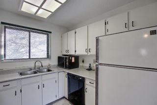 Photo 19: 47 Falworth Place NE in Calgary: Falconridge Detached for sale : MLS®# A1139441