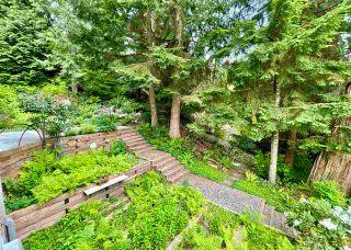 Photo 37: 12238 269 Street in Maple Ridge: Northeast House for sale : MLS®# R2583508