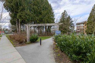 "Photo 26: 404 12525 190A Street in Pitt Meadows: Mid Meadows Condo for sale in ""Cedar Downs"" : MLS®# R2549011"
