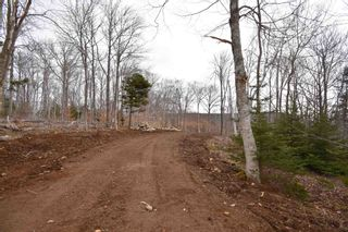 Photo 11: Lot Lighthouse Road in Bay View: 401-Digby County Vacant Land for sale (Annapolis Valley)  : MLS®# 202106334