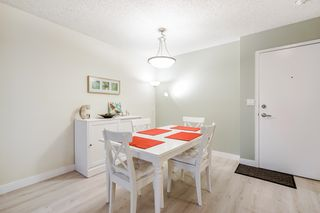 """Photo 5: 303 5664 200 Street in Langley: Langley City Condo for sale in """"Langley Village"""" : MLS®# R2624144"""