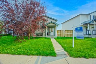 Main Photo: 54 Martinvalley Way NE in Calgary: Martindale Detached for sale : MLS®# A1128326