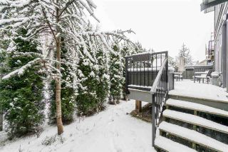 "Photo 31: 10 8217 204B Street in Langley: Willoughby Heights Townhouse for sale in ""Everly Green"" : MLS®# R2539828"