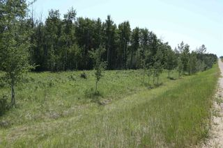Photo 5: TWP 494 RR 42: Rural Leduc County Rural Land/Vacant Lot for sale : MLS®# E4252228