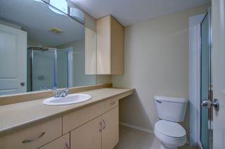 Photo 8: 304, 17011 67 Avenue NW: Edmonton Condo for rent