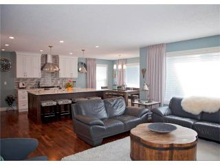 Photo 13: 67 CHAPMAN Way SE in Calgary: Chaparral House for sale : MLS®# C4065212
