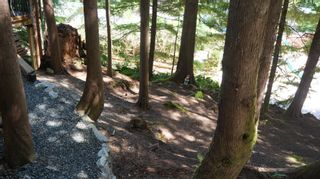 Photo 21:  in : Z3 Lake Cowichan Building And Land for sale (Zone 3 - Duncan)  : MLS®# 442658