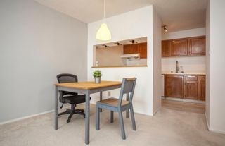 Photo 7: 1710 9800 Horton Road SW in Calgary: Haysboro Apartment for sale : MLS®# A1096247