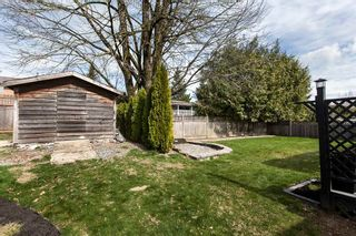 Photo 20: 26879 24A Avenue in Langley: Aldergrove Langley House for sale : MLS®# R2248874