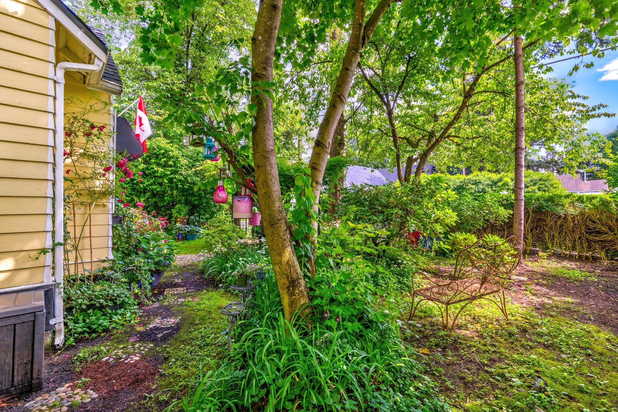 Photo 7: Photos: 20623 114 Avenue in Maple Ridge: Southwest Maple Ridge House for sale : MLS®# R2465656